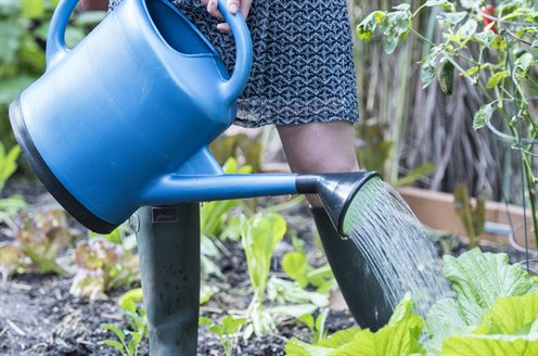 06341_1078_french-blue-plastic-watering-can-3-gallon.jpg